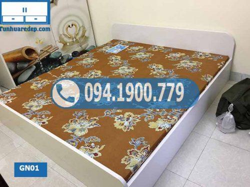 Giường ngủ kiểu bệt bằng nhựa Đài Loan GN01